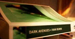 darkavenbues